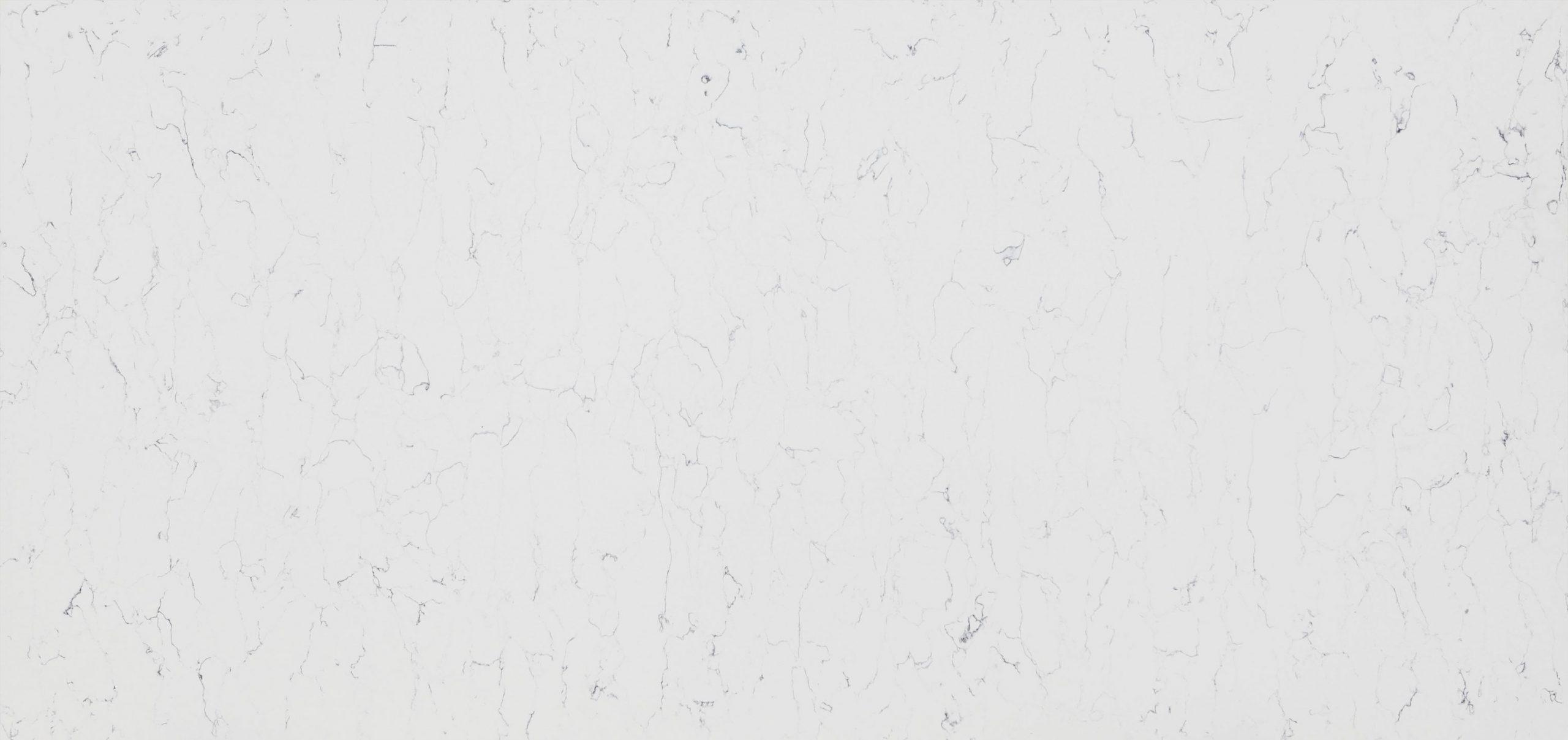 Vicostone Bianco venato BQ8440 02